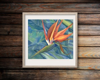 Wall Art Print ~Watercolor Flowers ~Bird of Paradise ~Gail Austin Art ~Tropical Flower ~Orange Wall Art ~Orange floral ~Orange Wall Decor