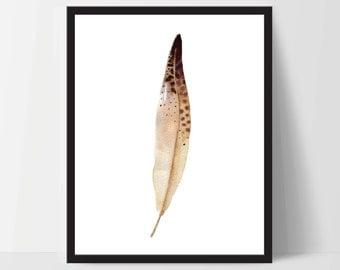 Printable Wall Art, Feather Art, Wall Print, Boho Art, Wall Prints, Feather Prints, Printable Art, Printables, Brown White Watercolor