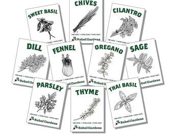 10 Varieties Heirloom Non-GMO USDA Organic Herb Garden Seeds Kit