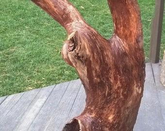 Extra Large Driftwood Yard Art Landscape Garden Centerpiece. Wood Sculpture 825