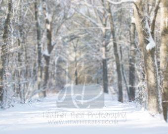 Snowy Road landscape digital background