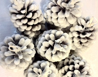 Pinecone Fire Starters, Winter Wedding Favors, Pinecone Firestarters, Pinecone Wedding Favors, Rustic Wedding Favors, Christmas Gifts