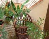 Rattan woven Wall pocket basket  / Wall hanging basket