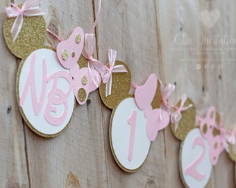 Newborn banner, Minnie Mouse Pink and Gold Newborn banner, light pink and gold, glitter banner