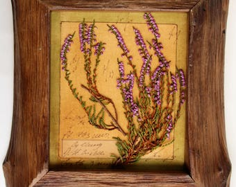 Pressed Flower Art, Vintage Herbarium Specimen Art, Rustic Wood Frame, 8.5x7 inches (22x19 cm's), pressed herbs, flower press, herbarium