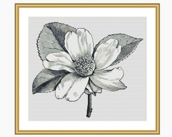 Cross Stitch Pattern, Modern cross stitch, VINTAGE BOTANICAL sketch cross stitch chart - Instant downloadable PDF