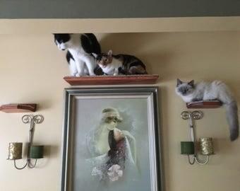 Floating Cat Shelf Set / 3 long shelves w/ Hidden Brackets