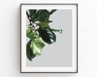 Botanical Wall Poster, Plant Wall Poster, Leaves Wall Poster, Leaves Wall Print, Modern Minimalist Poster, Large Poster Art, Green Print Art