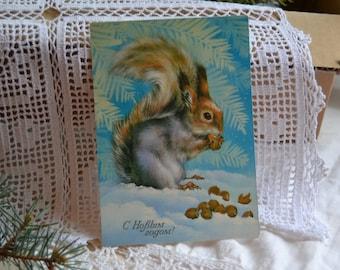 Vintage unused Russian Christmas postcard, Squirrel with nuts, Winter scene, Russian Christmas postcard, Soviet 1980s postcard