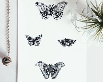 4 Moths Wall Art Print - Black and White - Unique Artwork