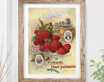VINTAGE KITCHEN Fruit Art Print / Poster Cooking Food Victorian Farm Harvest Illustration Painting Home A4 A3 A2 (10 Size Options)