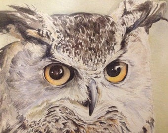 Strict long-eared OWL Long-eared Owl original aquarelle 40x60cm with frame