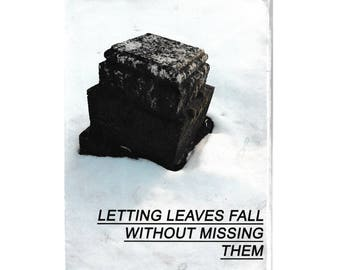 letting leaves fall without missing them- a poetry zine