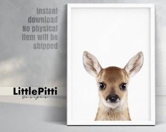 Baby deer print, woodlands nursery decor, baby deer fawn print, modern wall art, woodlands Animals, kids room wall art, wall art prints