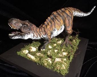 Tyrannosaurus Rex diorama, hand painted /repainted / custom, ONE OF A KIND