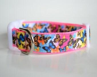 Adjustable Butterflies Dog Collar, Polypro Dog Collar, Webbed Dog Collar, Adjustable Dog Collar, Fun Collar, Decorative Collar