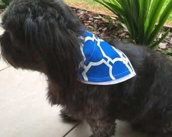 Blue Steel Dog Scarf