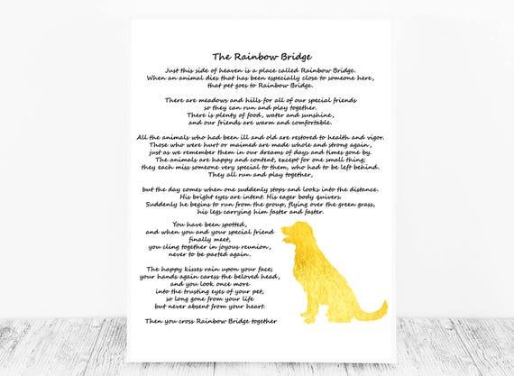 The rainbow bridge poem online dating