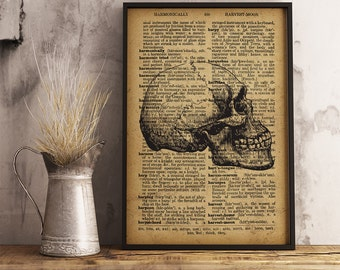 Skull Print, Medical Poster, Dictionary art print, Gift for a medical student or for Doctor's office decor, Skull Anatomy Print (HA02)