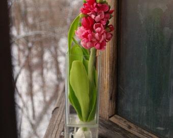 Flower arrangement, cold porcelain flower, snowdrops cup, flower clay flower polymer clay, accessories flowers, snowdrops