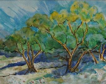 Trees Awakening