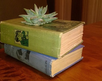 Upcycled book planter