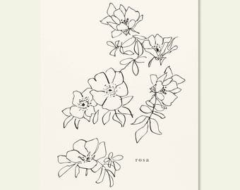 Rose Floral Illustrated Art Wall Print