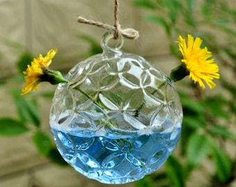 Clear Glass Vase Terrarium Wall Hanging Ball Creative Diy Home Craft
