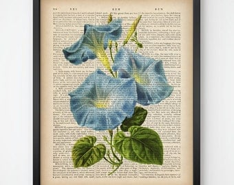 Flower dictionary print, Morning glory print, Botanical art prints, Botanical wall art, Instant download, Antique illustration, 8x10, 11x14