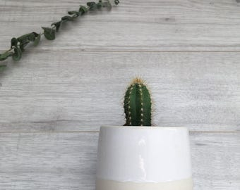 Ceramic Planter | Handmade Succulent Planter | Pottery