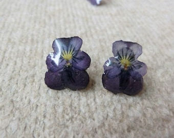 Dried Flower earrings, iris earrings, handmade earrings, stud earrings, pressed flower earrings