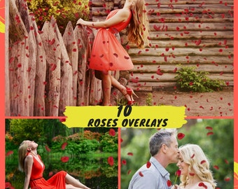 ON SALE, Falling Roses Petals Overlays, Red Roses Photoshop PNG Overlays, Photo Overlays, Valentines Overlays, Valentine Photo Effect