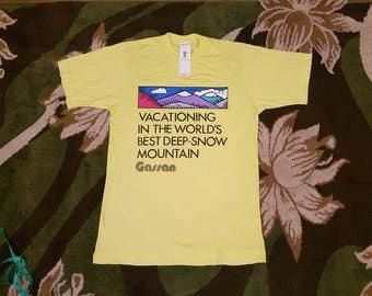 Vintage Deadstock With Tag/Vacationing In The World's Best Deep-Snow Mountain/Gassan T-shirt Rare