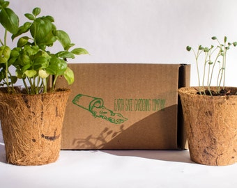indoor tomato garden. Outdoor Flower Mix Gardening Kit (3 Pack) By Earth Safe Company, Cosmo Indoor Tomato Garden