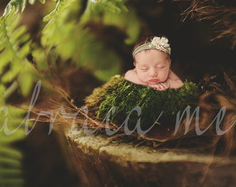 newborn forest theme background/backdrop instant download
