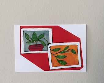 plants in frame print