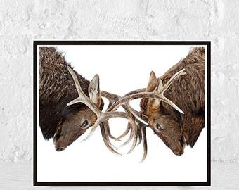 deer print wall art woodland nursery animal print stag print poster decor antlers woodland animals Stag Head Stag Picture Animal Art Print