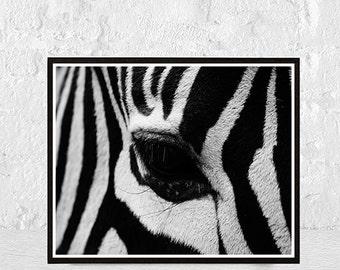 zebra print, animal print, Safari Nursery, Zebra Nursery Art, Zebra Nursery Print, Zebra Art, Zebra Nursery Decor, African Baby Animals