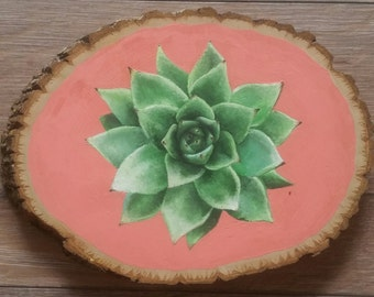 Wood/Tree Canvas Succulent Plant Painting - Salmon