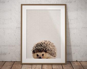 Woodland Nursery Hedgehog, Woodland Creatures, Hedgehog, Woodland Nursery, Hedgehog Art Print, Nursery Wall Art, Forest Animals Printable