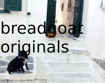 Cat & Dog - Greek island scene - Mykonos