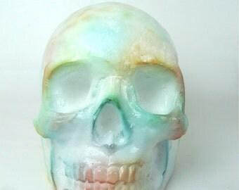 Pop art - skull skull