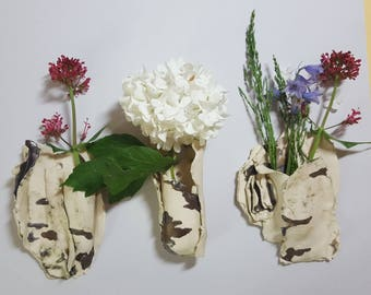 Wall hanging bark vases