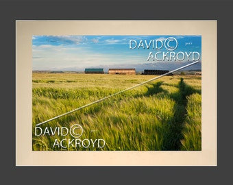 Leading lines- quintessential English summer evening- relaxing- mounted 18X12 print BY David. C. Ackroyd