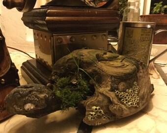 Driftwood Art (Green Goddess)