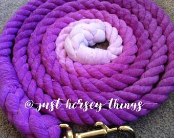 Purple Twist Ombré Lead Rope
