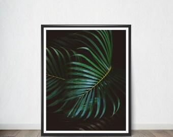 Tropical Leaf Digital print Poster , Digital Poster, Wall Decor,Home Decor, Modern Decor, Printable Instant Download
