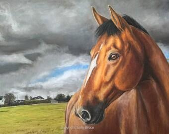 Horse Portrait - custom pet portrait, dog portrait, catportrait, portrait commission, pet portraits, pet portrait, 40 x 30 cm 10% deposit.