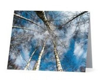 Winter Sun Blank Notecard