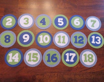 Yearly Birthday Photo Tags, Ages 2-18, Annual birthday Photo Tags,